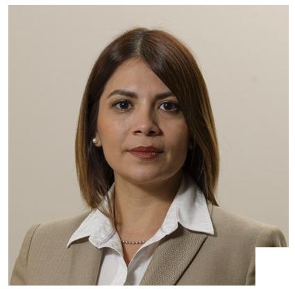 perfil-presenter